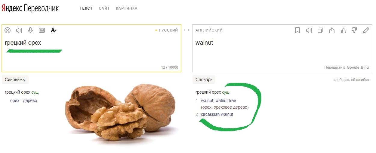 Googl переводит слова грецкий орех как черкесский