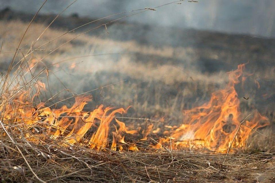 В Адыгее наблюдается высокий класс пожароопасности