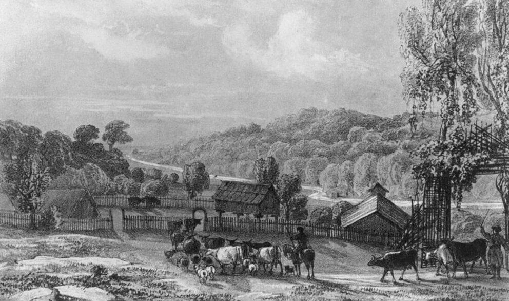 Расселение оставшихся черкесов на Кавказе после Кавказской войны