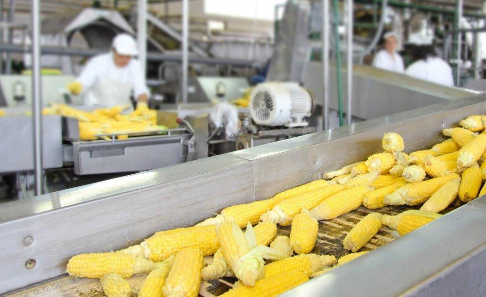 В Адыгее построят два новых завода