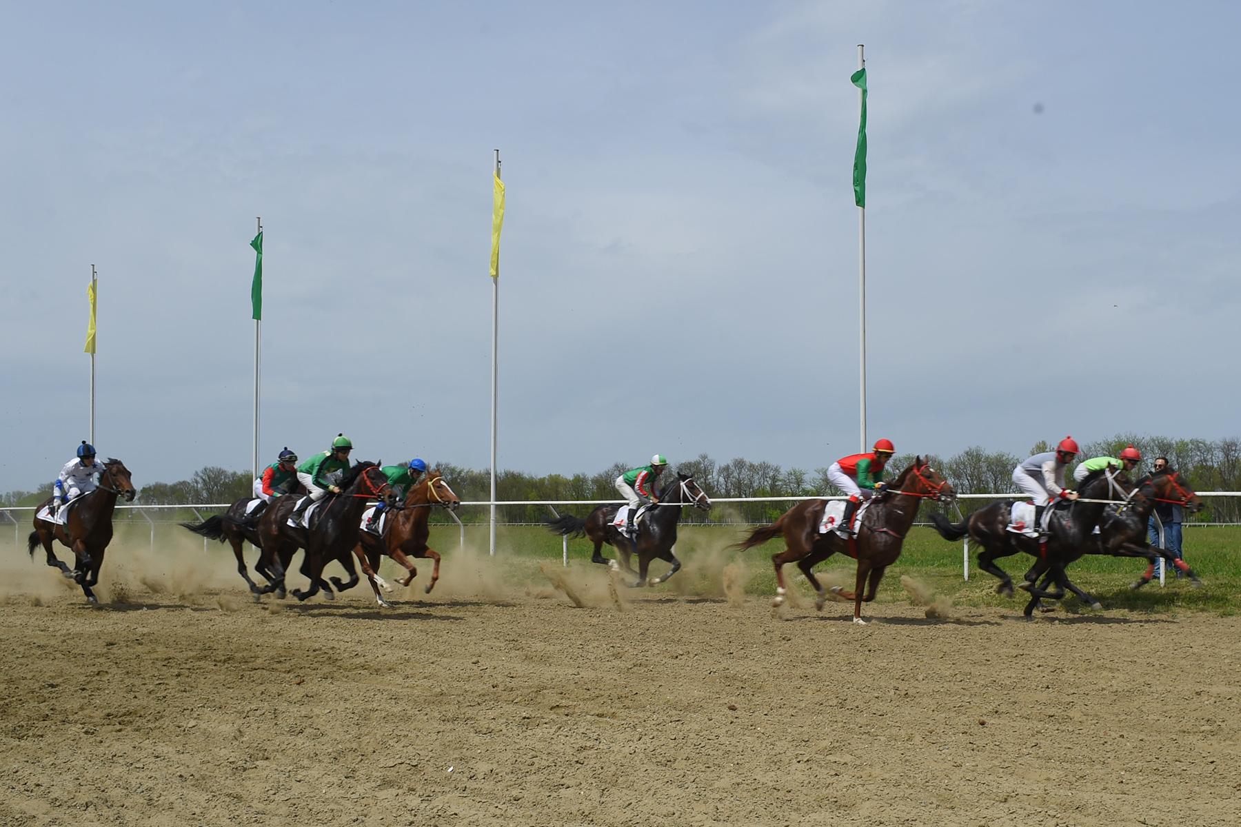 В преддверии Дня Победы в Адыгее прошли конноспортивные состязания