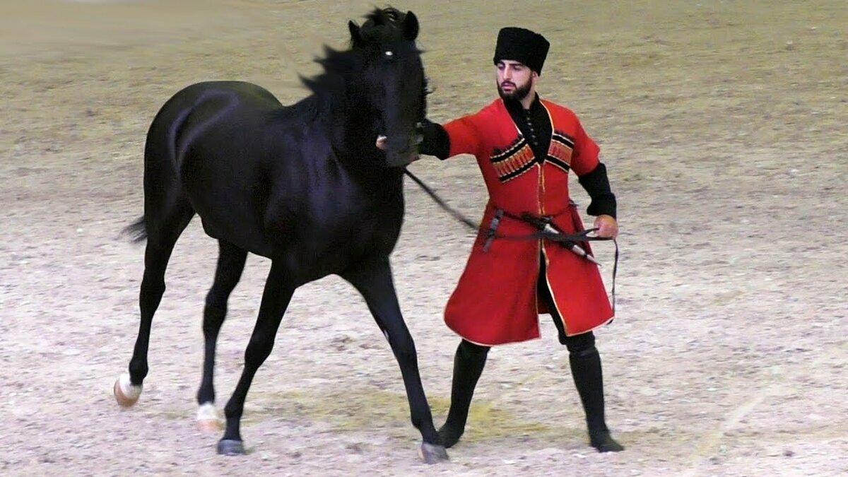Система воспитания и содержания лошади у черкесов