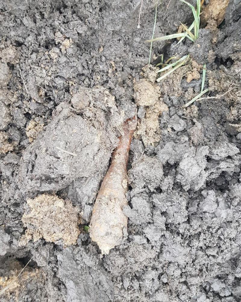 Три мины и артснаряд времен Великой Отечественной войны обнаружили в Адыгее за двое суток