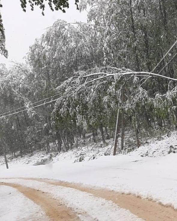 Энергетики после снегопада устраняют локальные порывы линий в Майкопском районе Адыгеи